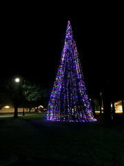 Christmas tree in Tumwater (asciident) Tags: christmas2017 christmas tumwater washington