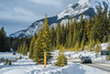 En route to Two Jack Lake (Roy Prasad) Tags: banff lake twojacklake alberta canada sony a9 prasad royprasad