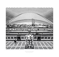 Bahnhof Liège-Guillemins (Sylvia Kahler) Tags: santiagocalatrava liège bahnhof liègeguillemins bw explored25