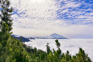 Mar de nubes en el Parque Nacional del Teide. (Sea of ​​clouds in the Teide National Park).