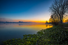 Early in the morning... (Artur Tomaz Photography) Tags: jacintos lake landscape pateiradefermentelos sky tranquility yellow blue boat flowers fog lagoon nature orange portugal sunrise tree water