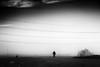 Hábitat (una cierta mirada) Tags: nature landscape sky silhouette tree dog doggy cloudscape lines man horizon bnw blackandwhite outdoors land earth