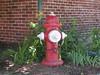 Mueller Co. - Super Centurion BSR - Wilton, NH (nhhydrants) Tags: hydrant