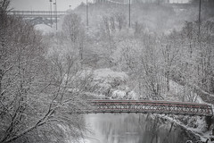 The Valley (A Great Capture) Tags: bridge viaduct bloor silver white snow fall streetphotography streetscape photography streetphoto street calle winter l'hiver 2016 agreatcapture agc wwwagreatcapturecom adjm ash2276 ashleylduffus ald mobilejay jamesmitchell toronto on ontario canada canadian photographer northamerica torontoexplore cityscape urbanscape eos digital dslr lens canon rebel t3i waterscape wet water agua eau stream river reflection mirror glass outdoor outdoors red architecture architektur arquitectura design woods trees tree arbre forest wald urbannature explorethedonvalley donvalley superpark don valley neige schnee cold