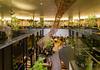 General view of Starbucks Coffee, Futago Tamagawa Tsutaya Kaden (スターバックスコーヒー二子玉川蔦屋家電店). (christinayan01 (busy)) Tags: interior indoor tokyo japan starbucks coffee cafe