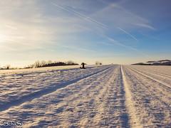 Wintertime (schasa68) Tags: winterlandschaft winter winteraktivität winterstimmung wintershot winterlandscape schnee snow sun sonne sunlight wintertag landschaft landscape nature austria mühlviertel oberösterreich upperaustria