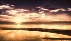 Dream in dream (Gio_ guarda_le_stelle) Tags: dream android bladerunner sognodentrosogno sunset seaside seascape clouds robot philipdick bronzeblue urania sciencefiction asimov novel stars orion