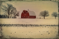A Country Scene (Dave Linscheid) Tags: barn architecture snow winter cold farm rural country agriculture texture textured tree topaxtextureeffects2 watonwan county mn minnesota usa prairie grunge vintage