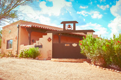 Indian Hill Digital Watercolor (randyherring) Tags: az arizona tucson us bloom cactus color desertplants flowers hotel mountains trees