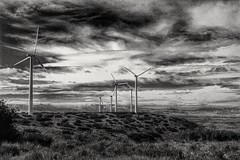 Aragón. Wind land II. (Film simulation) (Fencejo) Tags: canon600dt3ikissx5 tamronspaf1750mmf28xrdiiild aragón wind muel eólico filmsimulation