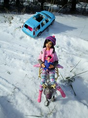 Saved by reindeer (flores272) Tags: madetomovebarbie barbie barbiedoll barbievolvo volvobarbiecar barbiecar reindeer frozenreindeer barbiebaby barbiefashionistaspolkadotfun polkadotfun barbiefashionistas winter snow outdoors