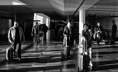 Airport Rush (Anne Worner) Tags: anneworner blackandwhite copenhagen denmark ricohgr airport bw candid people rollingsuitcase street streetphotography suitcase travellers walking kastrup