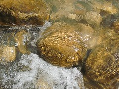Water and rocks in the Virgin River (Annes Travels) Tags: zionnationalpark utah zionnarrows canyon waterfall virginriver desert
