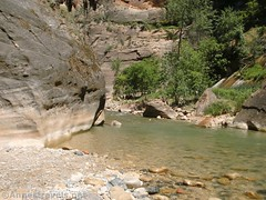 Virgin River in a wide spot (Annes Travels) Tags: zionnationalpark utah zionnarrows canyon virginriver desert
