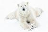 Just chillin' - A high key edit (Phyllis072) Tags: snow ywp ywp2108 polarbear