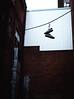 No shoes, no service (E. Letourneau Photo) Tags: fuji fujifilm fujinon xf35mmf14 shoe shoes thread urban alleyway street alley