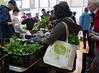 CitySeed_WinterMarket_01132018lr-016-2 (cityseednh) Tags: cityseed tote lettuce produce learosemarystudios