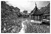 醉白池 (Mark Chan Photography) Tags: zeiss distagont2815 nikon uwa bw shanghai china travel pond crane monotone pavilion chinese