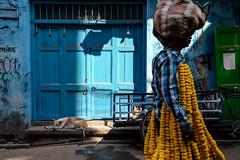 (Jpierrel) Tags: ixt inde india calcutta kolkata flowerman flower fuji fujifilm xt1 1855 fujifilmxt1 xf1855mmf284
