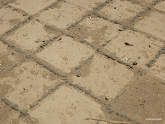 Nebuchadnezzar's Palace, Babylon  (8).jpg (tobeytravels) Tags: iraq babylon babel mesopotamia akkadian amorite hammurabi assyrian neobabylonian hanginggardens achaemenid seleucid parthian roman sassanid alexanderthegreat nebuchadnezzar sargon chaldean hittites sennacherib xerxes