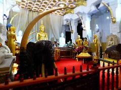 Temple (lesleydugmore) Tags: temple treasure region buddha srilanka ceylon kandy gold red white rail black elephant inside indoor carpet tusk