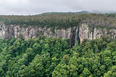 Canyon Lookout (palbion) Tags: springbrook queensland australia au