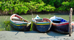 Not Gondolas (krossbow) Tags: gate1travel g1photofriday gate1 colombia photolemur travel southamerica vacation tour trip cartagena cartagenadeindias laboquilla boquilla mangrove mangroves ecotour ecotourism ecotourismo arriberos eat panasonic lumix tz90 zs70 fb