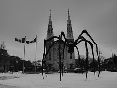 Cathédrale d'Ottawa (stephane.gaussot) Tags: cathedrale ottawa canada ontario sculpture