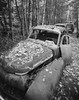 Abandoned Queue (Tony Bokeh Larsson) Tags: chamonixf1 nikkor75sw hp5 kodakhc110 4x5 largeformat abandoned cars volvopv old vintage wood nature film grain outside monochrome leafs autumn rusty båstnäs carcementary
