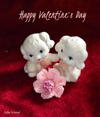 2018_0213_show your love, not just on Valentine's Day (cathy2_24) Tags: dog lollipop flower crochet pink shakers pepper salt white red
