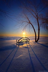 Thoughts and Prayers (Phil~Koch) Tags: travel journey life mood emotions country outdoors colors living heaven weather horizons lines landscape field art meadow sky twilight horizon sunset clouds wisconsin scenic vertical photography office portrait serene morning dawn nature natural earth environment inspired inspirational season beautiful hope love joy dramatic unity trending popular canon rural fineart arts shadow sun sunrise light peace shadows blue white snow winter frozen endless bench shore lakemichigan