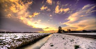 Dutch golden light.
