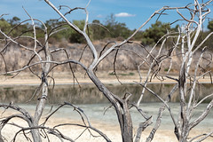 4Y4A1810 (francois f swanepoel) Tags: dam drought kwaggaskloofdam quaggaskloofdam water westerncape worcester droogte scenics landscapes