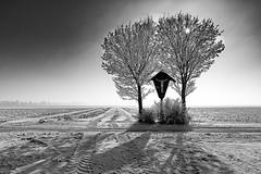 The wayside cross b&w (++sepp++) Tags: landschaft landschaftsfotografie landscape bayern bavaria deutschland germany winter schnee snow kalt cold raureif hoarfrost bw blackwhite monochrom einfarbig sw schwarzweis bäume trees wegkreuz waysidecross feldkreuz gegenlicht backlight backlit sonnig sunny