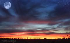[Blue Super Moon 2018] (vikapdesigns) Tags: blue super moon sunrise sun cityscape sky stars dawn night clouds landscape california
