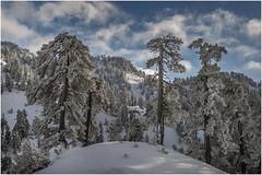 Larra-Belagua002 (Fermin Ezcurdia) Tags: larra belagua navarra pirineo nieve pyrenees esquinordico arlasarette anie