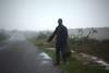 SAD MOROCCO (fabiogis50) Tags: marocco pioggia rain road fog nebbia