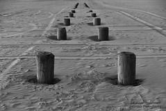 Repetition (lauren3838 photography) Tags: lauren3838photography laurensphotography landscape beach nj jerseyshore newjersey shore sand nature ilovenature nikon d750 pilings atlanticocean diamondbeach patterns tamron2875