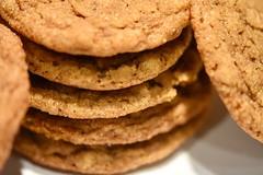 Ginger Cookies 57/365 (stevenp2269) Tags: d7200 nikon macro ginger kingarthurflour cookies