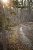 IMG_3714_pp_M (OceanStorme) Tags: allairestatepark allaire monmouthcountynj canon5dmarkii canon24105mmf4