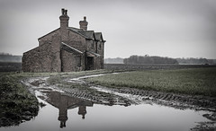 The Old Place (Mister Oy) Tags: farm farmhouse track puddle reflection nikond850 nikon2470mmf28afs old rural decay water fields farming muted building vacant brick