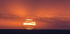 Sunrise on the Mara (arcadia1969) Tags: maasaimara masaimara mara kenya africa sunset sunrise