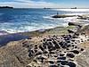 20180121_170120-IMG_5447 (dudegeoff) Tags: 20180121sydlaperouse laperouse nsw newsouthwales australia 2018 january beaches bareisland