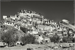 Thiksey Gompa (channel packet) Tags: india ladakh leh thiksey buddhism religion monastery monochrome davidhill