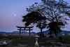 月と神社ーMoon and Shinto shrine (kurumaebi) Tags: yamaguchi 秋穂 nikon d750 山口市 nature landscape 風景 自然 sunset dusk 夕焼け moon 月 神社 shrine