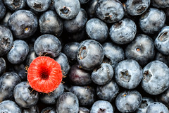 stranger (le cabri) Tags: blueberry berryfruit raspberry textured texturedeffect macro red blue closeup rawfood freshness nature ripe colors gourmet juicy alone different sweetfood vitamin whole