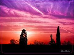 Κυπαρίσσια Ηλιοβασίλεμα  !!! (Spiros Tsoukias) Tags: hellas ελλάδα ηλιοβασίλεμα ήλιοσ ουρανόσ σύννεφα φύση διακοπέσ μακεδονία greece sunset sun sky clouds nature holidays macedonia grèce coucherdesoleil soleil ciel nuages vacances macédoine griechenland sonnenuntergang sonne himmel wolken natur ferien mazedonien grecia puestadelsol sol cielo nubes naturaleza vacaciones tramonto sole nuvole natura vacanze griekenland zonsondergang zon hemel natuur vakantie macedonië греция закат солнце небо облака природа праздники македония cypress κυπαρίσσια