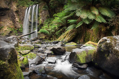 Hopetoun Falls || VICTORIA || AUSTRALIA (rhyspope) Tags: australia aussie vic victoria great ocean road otways national park rainforest woods forest hopetoun falls rhys pope rhyspope canon 5d mkii rocks river creek stream fern nature