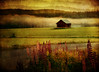 Summernight (BirgittaSjostedt) Tags: landscape summer night forest sunrise flower field texture paint light haze fog barn lenabemanna birgittasjostedt