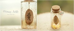 "hand craved wood message, Kanji symbol for""love"",Tiny message in a bottle,Personalised gift ,Valentine Card,Gift for her/him,Girlfriend gift, birthday gift, message card and holiday card ideas (charles fukuyama) Tags: anniversarycard valentineday handmadecard custom partygift weddinggift glitter homedecor deskdecor unique miniaturescard kikuike funnycard paper art"
